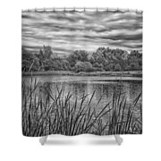 Storm Passing The Pond In Bw Shower Curtain
