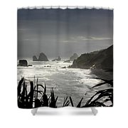 Stormy Coast New Zealand Shower Curtain