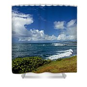 Stormy Day At The Beach Shower Curtain