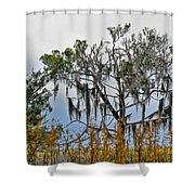Stormy Marsh Cedar Tree Shower Curtain