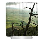 Stormy Tree Shower Curtain