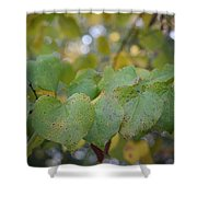 Stranded Hearts Of Autumn Shower Curtain