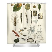 Strange Dusty And Thread Fungus Shower Curtain