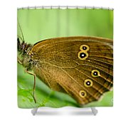 Strange Encounters Shower Curtain