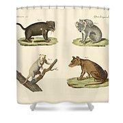 Strange Marsupials Shower Curtain