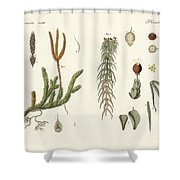 Strange Mosses Shower Curtain