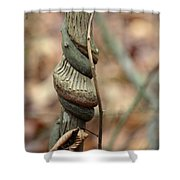 Strangled By Nature Shower Curtain