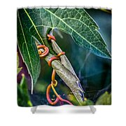 Strangler Shower Curtain