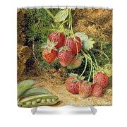 Strawberries And Peas Shower Curtain by John Sherrin
