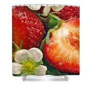 Strawberries And Vanilla Shower Curtain