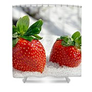 Strawberries On Ice  Shower Curtain