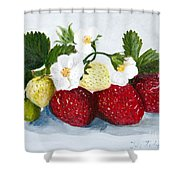 Strawberries With Blossoms Shower Curtain