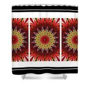 Strawberry Explosion Triptych - Kaleidoscope Shower Curtain
