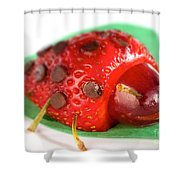 Strawberry Ladybug Shower Curtain
