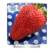 Strawberry On Blue Plate Shower Curtain
