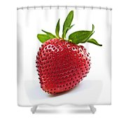 Strawberry On White Background Shower Curtain by Elena Elisseeva