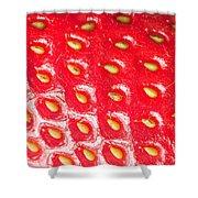 Strawberry Texture Shower Curtain