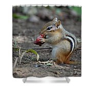 Strawberry Thief Shower Curtain