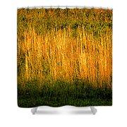 Straw Landscape Shower Curtain