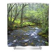 Stream Below Amicalola Falls Shower Curtain