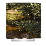 Stream Color Shower Curtain