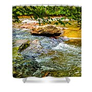 Stream II Shower Curtain