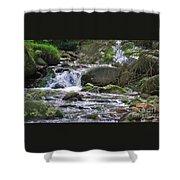 A Stream In Wicklow # 4 Shower Curtain