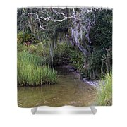 Stream To The Past Shower Curtain