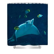 Streamlined Stingray Shower Curtain