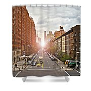 Street As Seen From The High Line Park Shower Curtain