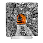Street In Stone Shower Curtain