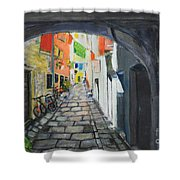 Street View 2 From Pula Shower Curtain