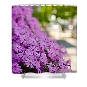 Street Wildflower Shower Curtain