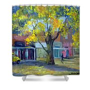 Streets Of Genoa Shower Curtain