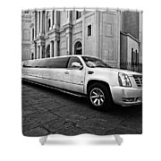 Stretch Bw Shower Curtain