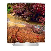 Striated Creek Shower Curtain