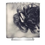 Striking In Black And White Shower Curtain