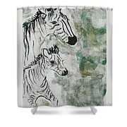 Striped Duet Shower Curtain