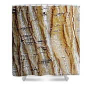 Striped Maple Shower Curtain