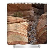 Striped Sandstone Shower Curtain