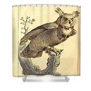 Strix Virginiana Owl Shower Curtain