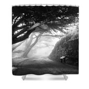 Stroll In The Fog Shower Curtain by Valeria Donaldson