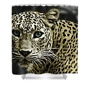 Strong Eyes Shower Curtain