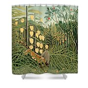 Struggle Between Tiger And Bull Shower Curtain