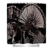 Strutters Shower Curtain by Todd Hostetter