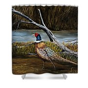 Strutting Pheasant Shower Curtain