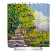 Study For Afternoon Shadows Shower Curtain