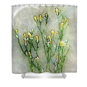 Nature Study In Moonlight Shower Curtain