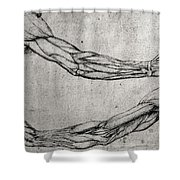Study Of Arms Shower Curtain by Leonardo Da Vinci