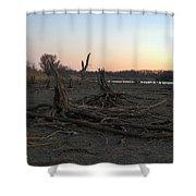 Stump Field Shower Curtain